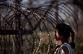Korean DMZ<br />