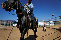 "Wild horses are gentled at the Warm Springs Correctional Center, a minimum security prison.  Hank Curry has run the horse training program for 5 years.  He has selected 500 horses, only 5 had to be returned.  Many have been adopted and are ridden.  The horses and inmates learn life lessons.  Horses learn from repetition and adjust to new things. As Hank says, ""It's about as exciting as watching paint dry.  We bore them into submission."""