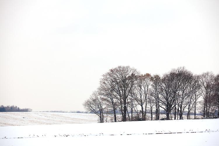 Europa, DEU, Deutschland, Nordrhein Westfalen, NRW, Rheinland, Niederrhein, Toenisberg, Schaephuysener Hoehen, Winter, Schnee, Baeume, Kategorien und Themen, Natur, Umwelt, Landschaft, Jahreszeiten, Stimmungen, Landschaftsfotografie, Landschaften, Landschaftsphoto, Landschaftsphotographie, Wetter, Wetterelemente, Wetterlage, Wetterkunde, Witterung, Witterungsbedingungen, Wettererscheinungen, Meteorologie, Wettervorhersage....[Fuer die Nutzung gelten die jeweils gueltigen Allgemeinen Liefer-und Geschaeftsbedingungen. Nutzung nur gegen Verwendungsmeldung und Nachweis. Download der AGB unter http://www.image-box.com oder werden auf Anfrage zugesendet. Freigabe ist vorher erforderlich. Jede Nutzung des Fotos ist honorarpflichtig gemaess derzeit gueltiger MFM Liste - Kontakt, Uwe Schmid-Fotografie, Duisburg, Tel. (+49).2065.677997, ..archiv@image-box.com, www.image-box.com]