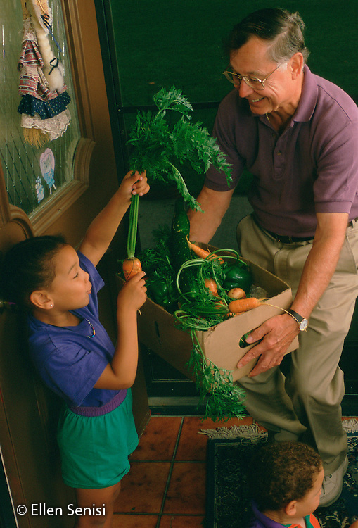 MR / Cortland, NY.Grandfather arrives at grandchildren's home and shows food from his garden to grandaughter (4, Jamaican-American/Caucasian).MR: Rea5, Edw4.PN#: 22325                                    FC#: 11822-00207.scan from slide.©Ellen B. Senisi