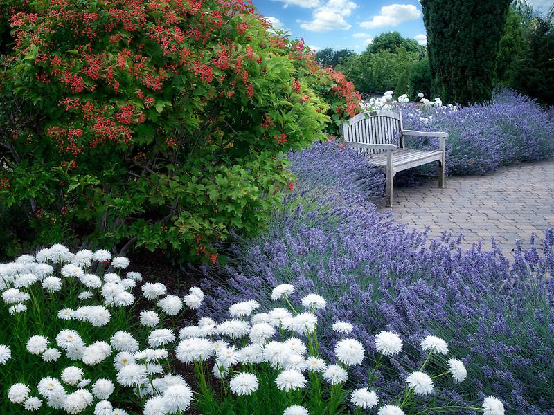 Bench and flowers. Oregon Garden. Silverton, Oregon