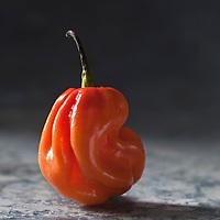 Gastronomie générale/Piment des Antilles