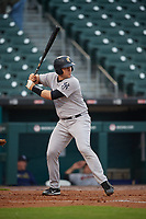 Scranton/Wilkes-Barre RailRiders Ryan Lavarnway (30) at bat during an International League game against the Buffalo Bisons on June 5, 2019 at Sahlen Field in Buffalo, New York.  Scranton defeated Buffalo 3-0, the first game of a doubleheader.  (Mike Janes/Four Seam Images)