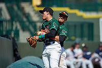 Great Lakes Loons Miguel Vargas (11) is lifted by Leonel Valera (8) after tumbling over the tarp in foul territory during a Midwest League game against the Wisconsin Timber Rattlers at Dow Diamond on May 4, 2019 in Midland, Michigan. Great Lakes defeated Wisconsin 5-1. (Zachary Lucy/Four Seam Images)