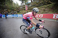 Rigoberto Uran (COL/OPQS) on the final Val Martello climb (2059m) loses his race lead in this controversial stage (because of a supposedly non/neutralised descent of the Stelvio earlier)<br /> <br /> 2014 Giro d'Italia <br /> stage 16: Ponte di Legno - Val Martello (139km)