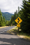 Lochsa River, Idaho, Lewis and Clark Scenic Byway, U.S. Highway 12 flows west from headwaters near Lolo Pass