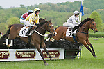 2 May 2009: Bee Charmer with Robert Walsh and Seeking No More with Xavier Aizpuru in the Creighton Farms Chase at the Virginia Gold Cup