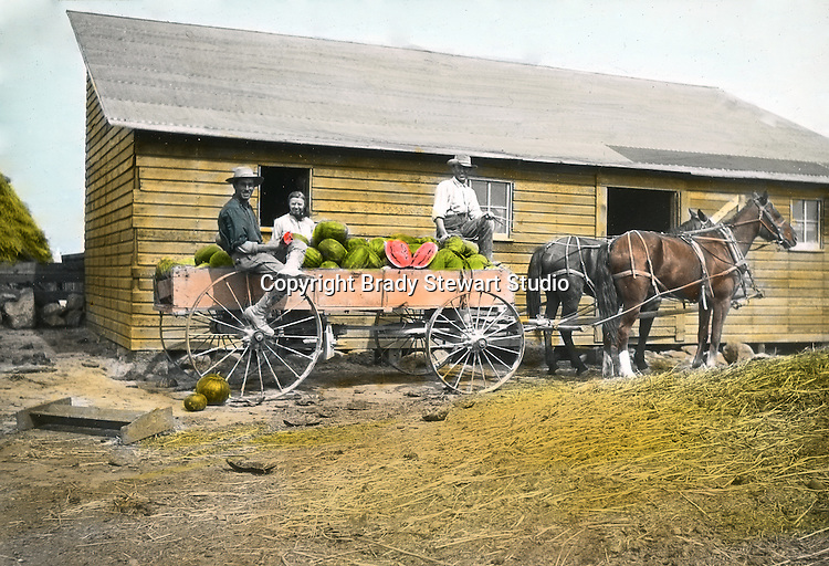 Jerome ID:  Bringing in the watermelon crop and eating a few along the way.  Brady Stewart and three friends went to Idaho on a lark from 1909 thru early 1912.  As part of the Mondell Homestead Act, they received a grant of 160 acres north of the Snake River.  Brady Stewart photographed the adventures of farming along with the spectacular landscapes. To give family and friends a better feel for the adventure, he hand-color black and white negatives into full-color 3x4 lantern slides.  The Process:  He contacted a negative with another negative to create a positive slide.  He then selected a fine brush and colors and meticulously created full-color slides.