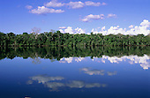 Juruena, Brazil. Forested river bank reflected in the water with clouds in the sky.