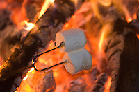Marshmallows being roasted over open fire for smores