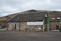 Auction mart at Dalmally, Argyll, Scotland.