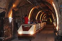 Europe/France/Champagne-Ardenne/51/Marne/Epernay: Champagne Mercier - Visite des caves avec le petit train
