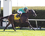 Ball Dancing and jockey Javier Castellano win the Jenny Wiley at Keeneland for owners G. Watts Humphrey Jr. and St. George Farm Racing and trainer Chad Brown.