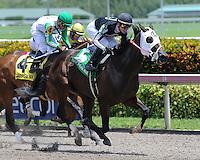Florida Sire Stakes 2016
