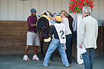 16 July 2011: Air Support before  winning the $600,000 Virginia Derby (Gr II) with Alex Solis at Colonial Downs in New Kent, Va. Air Support is owned by Stuart S. Janney, III and trained by Claude R. McGaughey III (Susan M. Carter/Eclipse Sportswire)