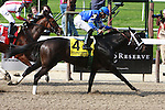 It's Tricky & Eddie Castro win the Grade I Ogden Phipps Handicap for fillies and mares, 3-year old & up, going 1 1/16 mile at Belmont Park.  Trainer Kiaran McLaughin.  Owners Godolphin Stable