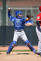 Texas Rangers catcher David Garcia (29) during an Instructional League game against the Cincinnati Reds on October 4, 2016 at the Surprise Stadium Complex in Surprise, Arizona.  (Mike Janes/Four Seam Images)