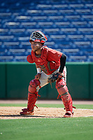 Philadelphia Phillies catcher Cesar Rodriguez (12) during an Instructional League game against the Toronto Blue Jays on September 17, 2019 at Spectrum Field in Clearwater, Florida.  (Mike Janes/Four Seam Images)