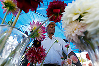 Curtis Morton, Jr. of C-ville Garden's specializes in selling dahlia's Saturday at the City Market in downtown Charlottesville, Va. The market features a variety of vendors and is open every Saturday through December. Photo/Andrew Shurtleff