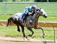 Sweet Maxine winning at Delaware Park on 6/1/13