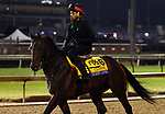 October 30, 2018 : Discreet Lover trains in preparation for the Breeders' Cup on October 30, 2018 in Louisville, KY.  Candice Chavez/ESW/CSM