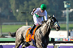 6 November 2009: Informed Decision with Julien Leparoux up wins the Breeders' Cup Filly and Mare Sprint at Oak Tree at Santa Anita in Arcadia California.
