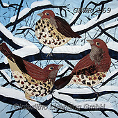 Simon, REALISTIC ANIMALS, REALISTISCHE TIERE, ANIMALES REALISTICOS, innovative, paintings+++++KateFindlay_ThrushesThree,GBWR169,#a#, EVERYDAY