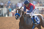 DEL MAR,CA-SEPTEMBER 04: Miss Sunset,ridden by Mike Smith, wins the C.E.R.F. Stakes at Del Mar Race Track on September 04,2017 in Del Mar,California (Photo by Kaz Ishida/Eclipse Sportswire/Getty Images)