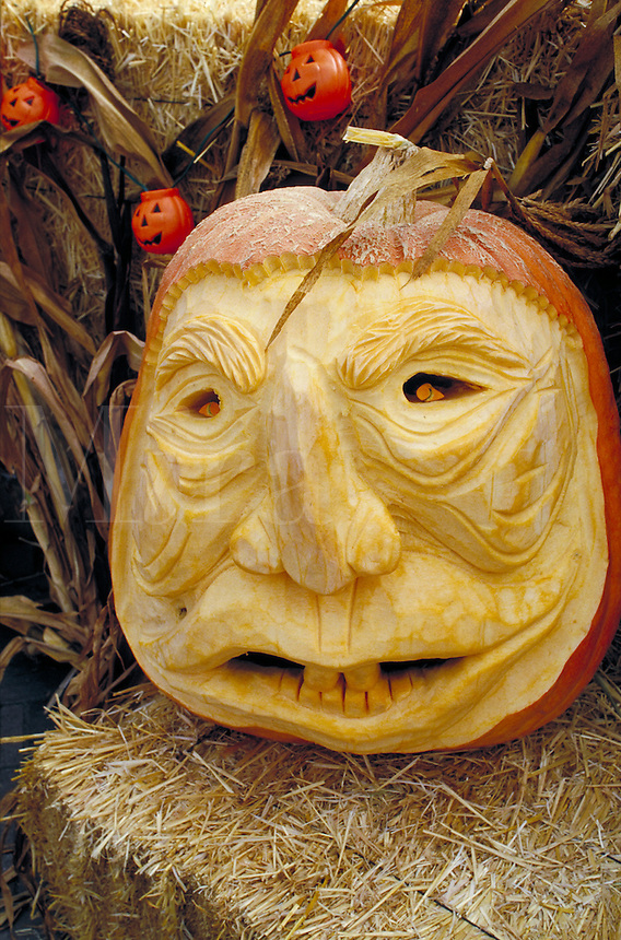CARVED PUMPKIN AT PUMPKIN FESTIVAL. CARVED PUMPKIN. HALF MOON BAY CALIFORNIA USA.
