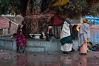 India, Rishikesh.  Early morning scene near the banks of the Ganges (Ganga).  Hindus tie strings around banyan trees in hope of good fortune.
