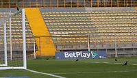 BOGOTÁ- COLOMBIA, 8-11-2020: Tigres FC y Atlético Huila en partido por la fecha 16 del Torneo BetPlay DIMAYOR I 2020 jugado en el estadio Metropoltano de Techo  de la ciudad de Bogotá. / Tigres FC and Atletico Huila  in match for the date 16 as part of BetPlay DIMAYOR Tournament I 2020 played at the  Metropolitano de Techo  stadium of Bogota city. Photos: VizzorImage / Felipe Caicedo / Staff