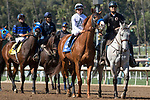 ARCADIA, CA FEBRUARY 18: #3 Justify, ridden by Drayden Van Dyke, in the post parade of a MSW on February 18, 2018 at Santa Anita Park in Arcadia, CA. (Photo by Casey Phillips/ Eclipse Sportswire/ Getty Images)