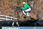07 November 2009: Dubai Sunday with Darren Nagle wins the Madison Plate at Montpelier Hunt Races in Orange, Va. Dubai Sunday is owned by Irvin Naylor and trained by Desmond Fogerty.