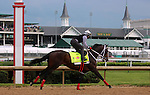 LOUISVILLE, KY - MAY 04:  Majesto (Tiznow x Unacloud, by Unaccounted For) gallops in front of the Dawn at the Downs crowd at Churchill Downs in preparation for the Kentucky Derby. Owner Grupo 7C Racing Stable, trainer Gustavo Delgado.(Photo by Mary M. Meek/Eclipse Sportswire/Getty Images)