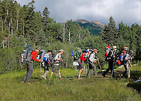 Photo story of Philmont Scout Ranch in Cimarron, New Mexico, taken during a Boy Scout Troop backpack trip in the summer of 2013. Photo is part of a comprehensive picture package which shows in-depth photography of a BSA Ventures crew on a trek.  In this photo BSA Venture Crew Scouts make their way across a trail against the backdrop of Baldy Mountain in the backcountry at Philmont Scout Ranch.   <br /> <br /> The  Photo by travel photograph: PatrickschneiderPhoto.com