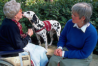 Woman volunteer watches her dalmatian therapy dog give a kiss to an elderly woman.
