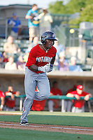 Potomac Nationals outfielder Narciso Mesa (25) at bat during a game against the Myrtle Beach Pelicans at Ticketreturn.com Field at Pelicans Ballpark on May 22, 2015 in Myrtle Beach, South Carolina.  Myrtle Beach defeated Potomac 8-4. (Robert Gurganus/Four Seam Images)
