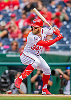 22 September 2018: Washington Nationals outfielder Bryce Harper, in what might be his last homestand in a Washington Nationals uniform, stands at bat in the first inning against the New York Mets at Nationals Park in Washington, DC. The Nationals shut out the Mets 6-0 in the 3rd game of their 4-game series. Mandatory Credit: Ed Wolfstein Photo *** RAW (NEF) Image File Available ***