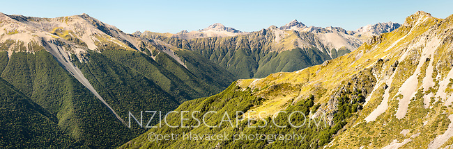 Panoramic alpine view of St. Arnaud Range, Nelson Lake National Park, South Island, New Zealand, NZ