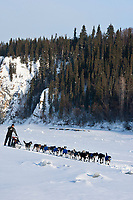 Zack Steer runs down the Yukon River shortly after leaving the village checkpoint of Ruby during the 2010 Iditarod