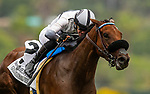 JULY 24, 2021: Flavien Prat aboard Going Global runs second in the San Clemente Stakes at the Del Mar Fairgrounds in Del Mar, California on July 24, 2021. Evers/Eclipse Sportswire/CSM