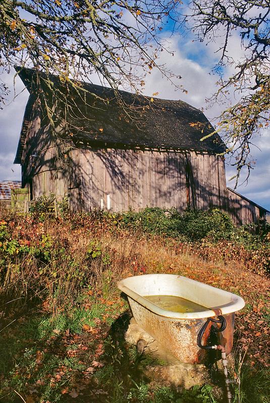 Old barn with bathtub water trough. Near Monroe, Oregon.