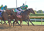 October 4, 2019: Engage, trained by Steve Asmussen, wins the Stoll Keenon Ogden Phoenix Stakes (G2) at Keeneland on October 4 2019 in Lexington, KY. Jessica Morgan/ESW/CSM