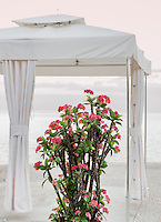 Spa tent with tropical flower overlooking the ocean, Negril, Jamaica