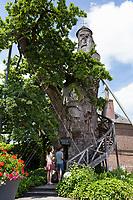 France, Seine-Maritime (76), Allouville-Bellefosse, le chêne d'Allouville // France, Seine-Maritime, Allouville-Bellefosse, the old oak of Allouville