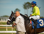 March 7, 2020: #3, TROPHY CHASER chases down the even money favorite KING FOR A DAY to win the Grade III Challenger Stakes for Trainer and Owner J C Avila on Tampa Bay Derby Day on March 7, 2020 in Tampa, FL. (Photo by Carson Dennis/Eclipse Sportswire/CSM)