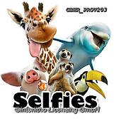 Howard, SELFIES, paintings+++++,GBHRPROV203,#Selfies#, EVERYDAY