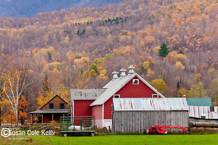 Fall foliage in West Rupert, VT, USA
