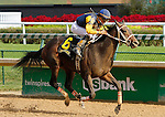 September 12, 2015:  Cocked and Loaded and jockey Emmanuel Esquivelwin the 34th running of the Iroquois Grade 3 $150,000 for 2 year old colts at Churchill Downs.  Candice Chavez/ESW/CSM