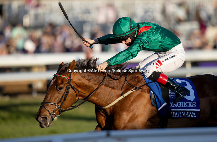 November 7, 2020 : Tarnawa, ridden by Colin Keane, wins the Longines Turf on Breeders' Cup Championship Saturday at Keeneland Race Course in Lexington, Kentucky on November 7, 2020. Alex Evers/Breeders' Cup/Eclipse Sportswire/CSM